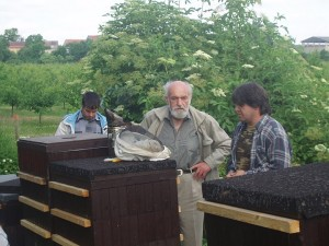 Metodika chovu včel v Eurodadantu