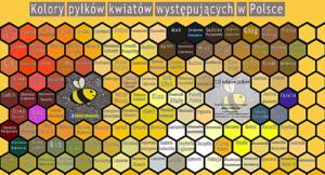 Tabulka barev pylových rousek